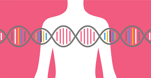 Should I Be Tested for Genetic Mutations Linked to Cancer?